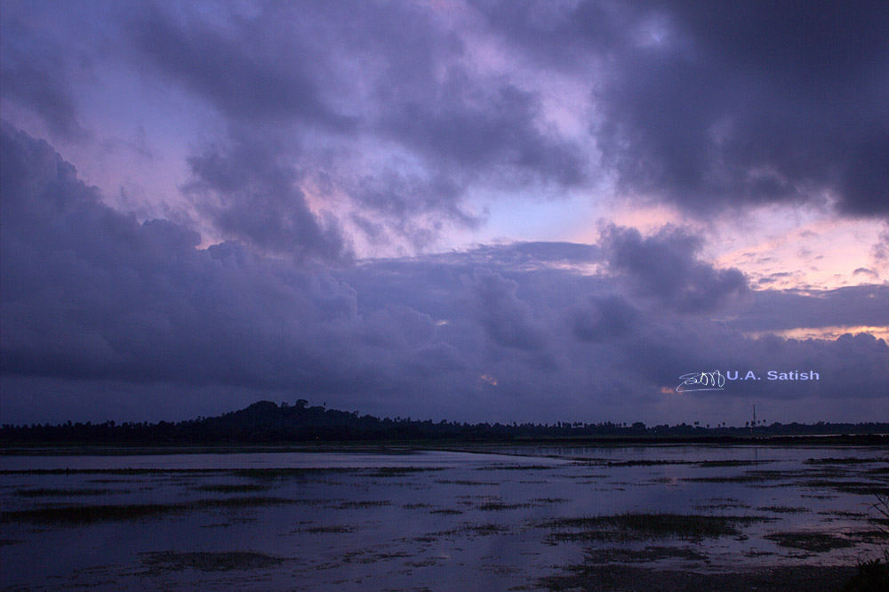 uasatish, India, Vasai, Maharashtra, nature, rain, blog,