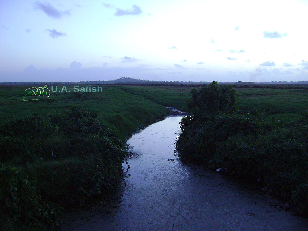Vasai, India, Maharashtra, stream ,nature, uasatish,