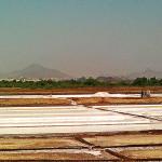 uasatish, India, Vasai, salt pans, blog,
