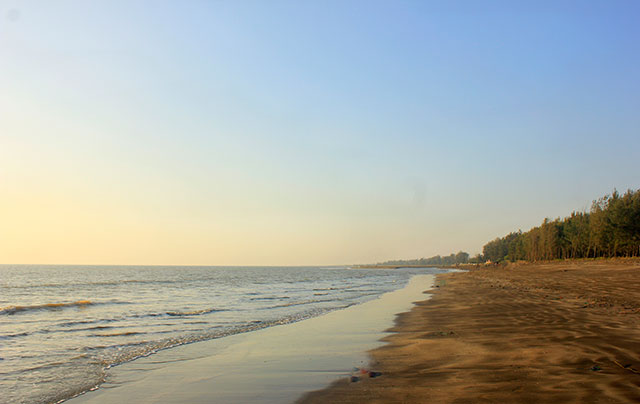 Suruchi Beach; Mumbai; India; Vasai; outdoor; beach; horse; uasatish; sky; sea; sand;