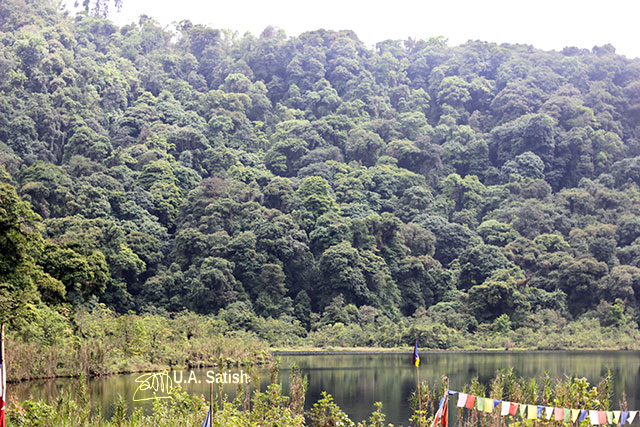 Khecheopalri Lake; Sikkim; India; trees; hill; sky; uasatish;