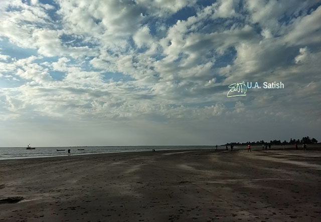 Rangaon Beach; beach; Vasai; India; sky; clouds; sand; uasatish;