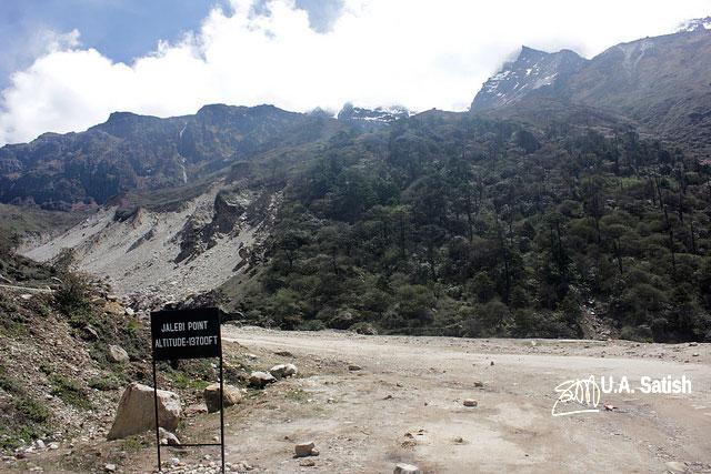Sikkim; Jalebi Point; road; street; mountain; road sign; trees; sky; uasatish;