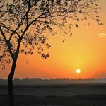 Vasai, India, Maharashtra, nature, uasatish, sunset,