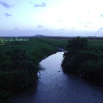 Vasai, India, Maharashtra, stream ,nature, uasatish,