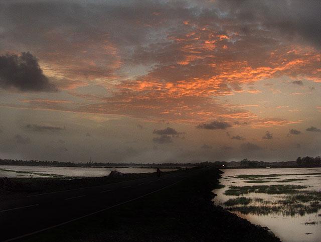 Orange, uasatish, India, Mumbai, nature,