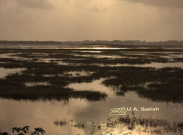 Mumbai, India, Vasai, uasatish, sunset, reflections,