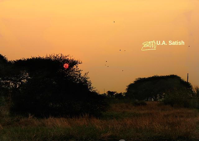uasatish; India; Mumbai; Vasai; red sun; https://uasatish.com;