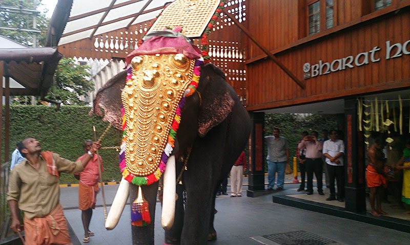 caparisoned elephant; BTH; Bharat Hotel; Kochi; Ernakulam; Kerala; India; hotel; uasatish; https://uasatish.com;