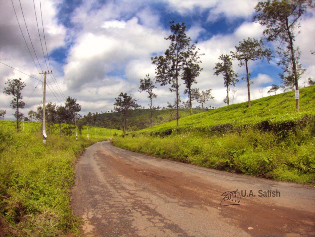Road to Kalpetta; Soochippara Falls; Wayanad; Kerala; tea gardens; uasatish;