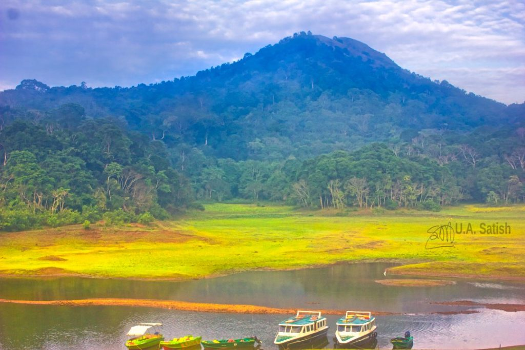 Boats on Periyar Lake; Kerala; Thekkady; uasatish; Periyar Lake;