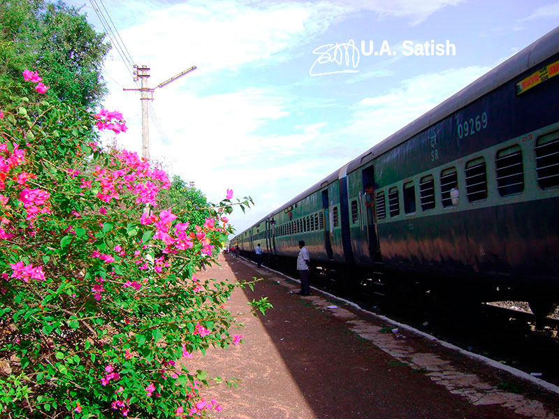 Anjani, Bougainvillea, Konkan, train station, India, uasatish, mist, travel