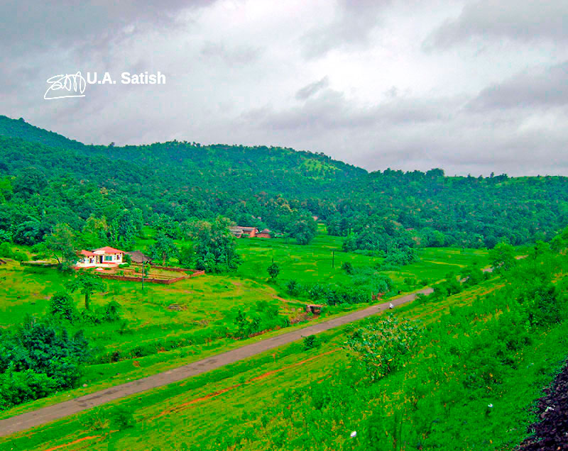 little red house; Konkan; outdoor; hill; meadow; travel; India; uasatish;