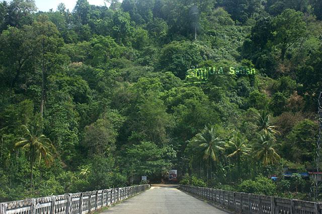 bridge; Mudira Puzha; Vellathuval; Kerala; India; outdoor; travel; uasatish;