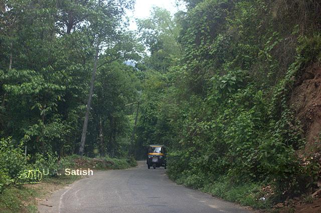 Idukki; road; Kerala; India; travel; trees; outdoor; uasatish;