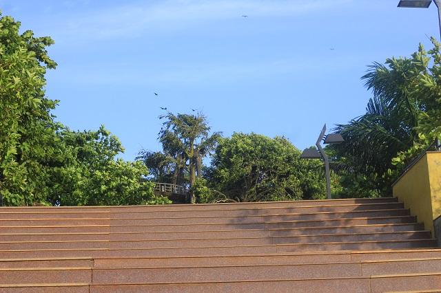 Thalassery; Tellicherry; Kerala; India; outdoor; uasatish; Overbury's Folly; steps;