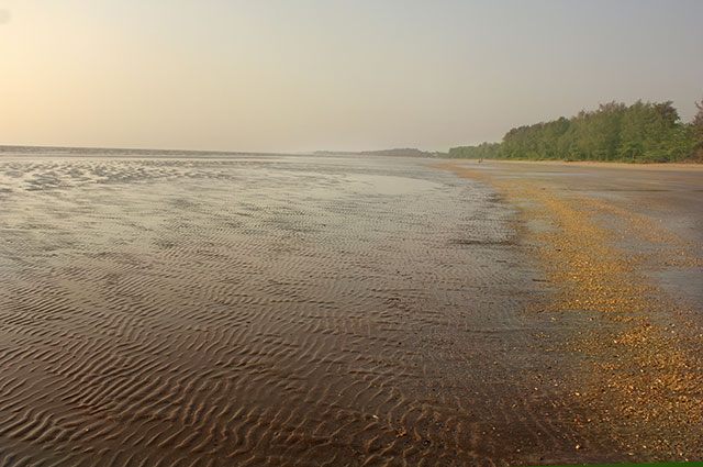 Gholvad; Maharashtra; India; Bordi beach; outdoor; sea; sky; uasatish; nature;