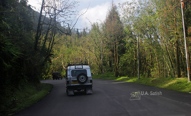 Gangtok; Sikkim; India; uasatish; road; trees;