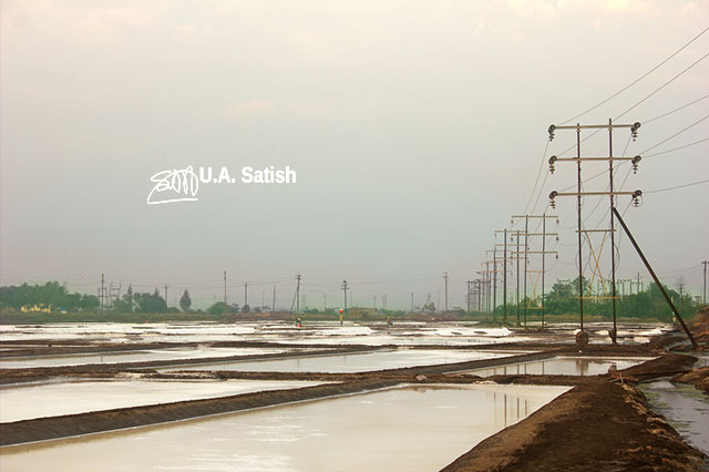 salt pans; power lines; Vasai; Mumbai; India; uasatish;