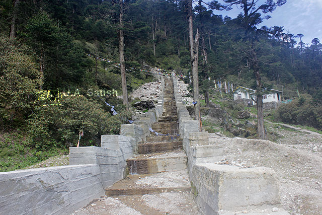 Yumthang, Sikkim, India, steps, uasatish
