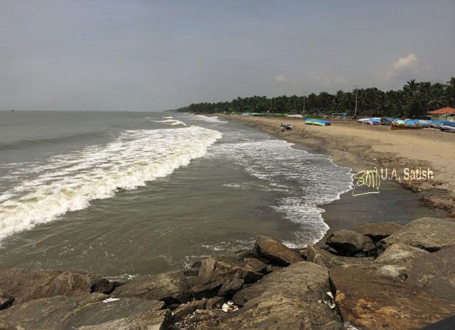 Beypore; beach; Kerala; India; sea; sky; rocks; uasatish; sand; trees;