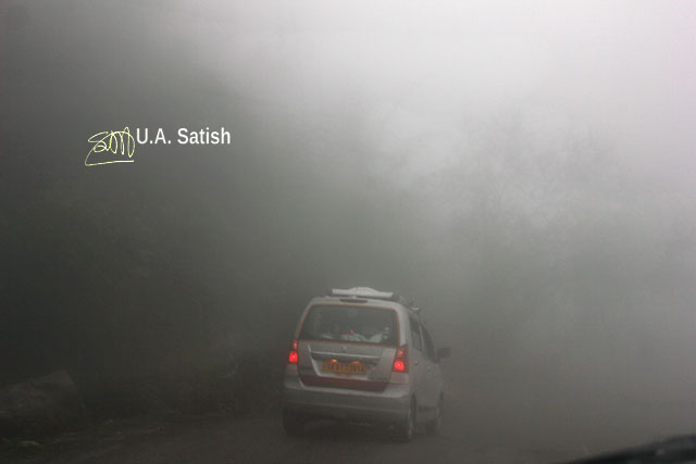 fog; road; car; Sikkim; India; uasatish;