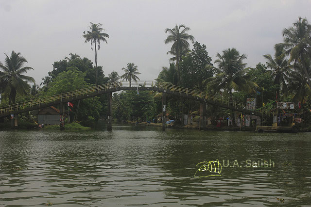 bridge; Vembanad Lake; Alappuzha; Kerala; India; lake; trees; sky; uasatish;