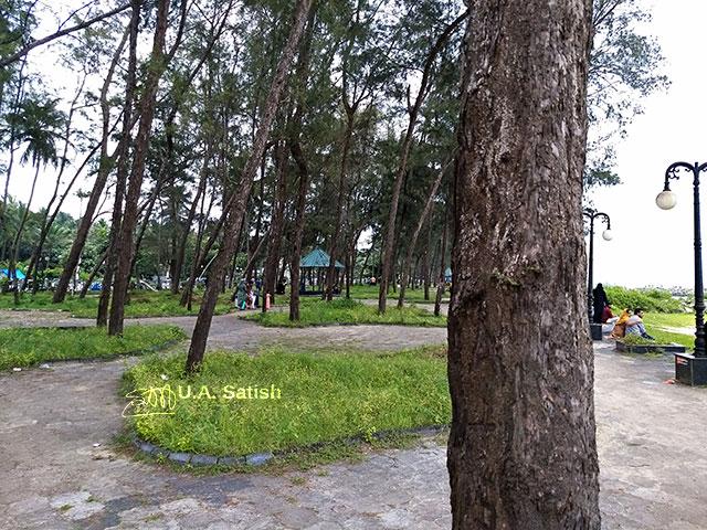 Kappad Beach; Casuarina Trees; Kerala; Malabar; Kozhikode; beach; uasatish;