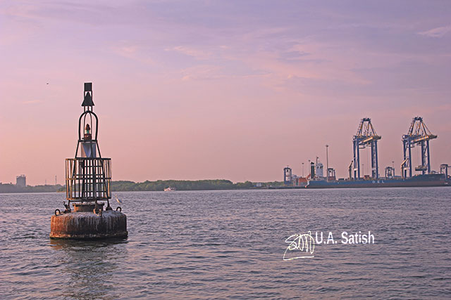 Kerala; Kochi; Vallarpadam; sea; buoy; sky; uasatish;