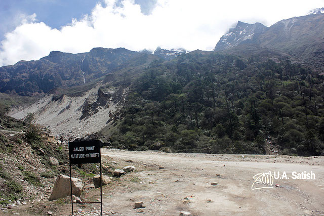 Sikkim; Jalebi Point; road; street; mountain; road sign; trees; sky; uasatish;