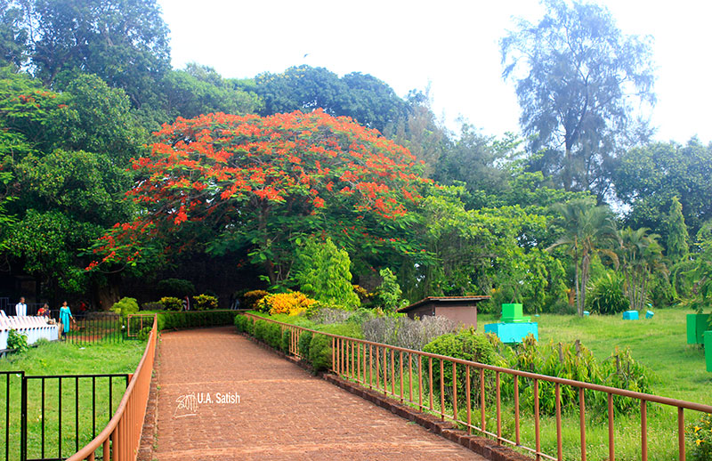 Kannur Fort; Fort St Angelos; Kannur; travel; Kerala; uasatish; garden;