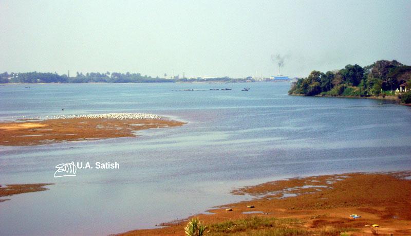 Netravati River; river; Mangalore; uasatish;