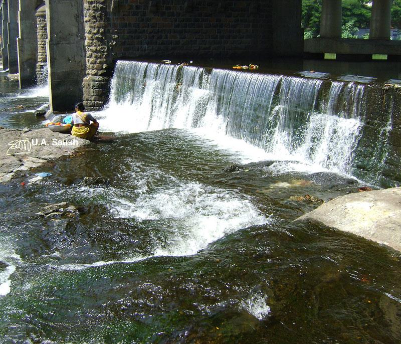 Godavari River; river; Nashik; uasatish;