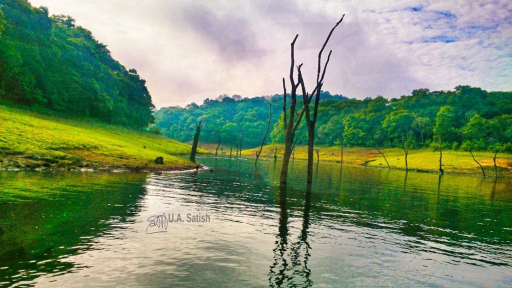 Periyar Lake; Kerala; Kerala God's Own Country; uasatish;
