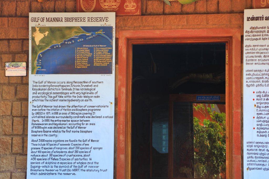 Gulf of Mannar Biosphere Reserve; Rameswaram; uasatish;