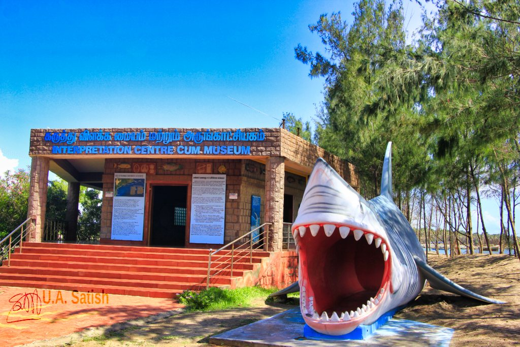 shark sculpture; Rameswaram; Tamil Nadu; uasatish; Vivekanada Memorial;